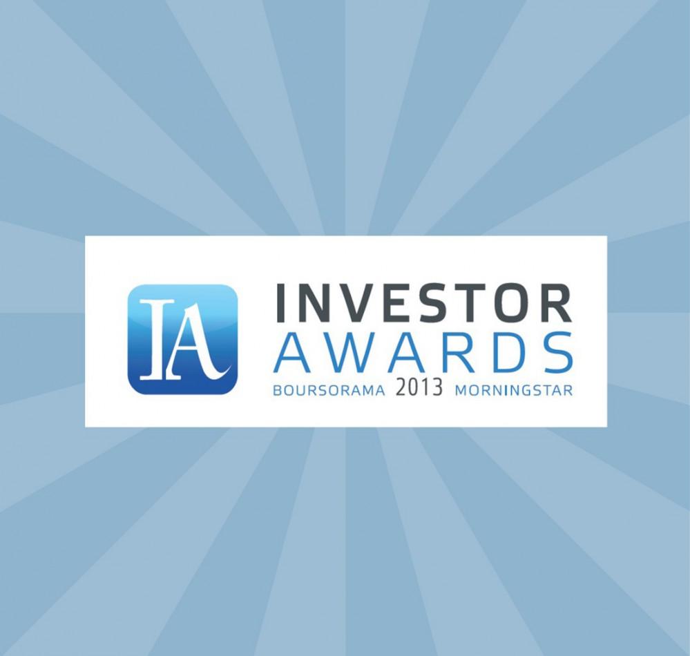 Investor Awards 2013