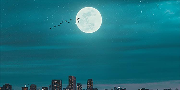 La tête dans les étoiles - Fly me to the moon (and back!)
